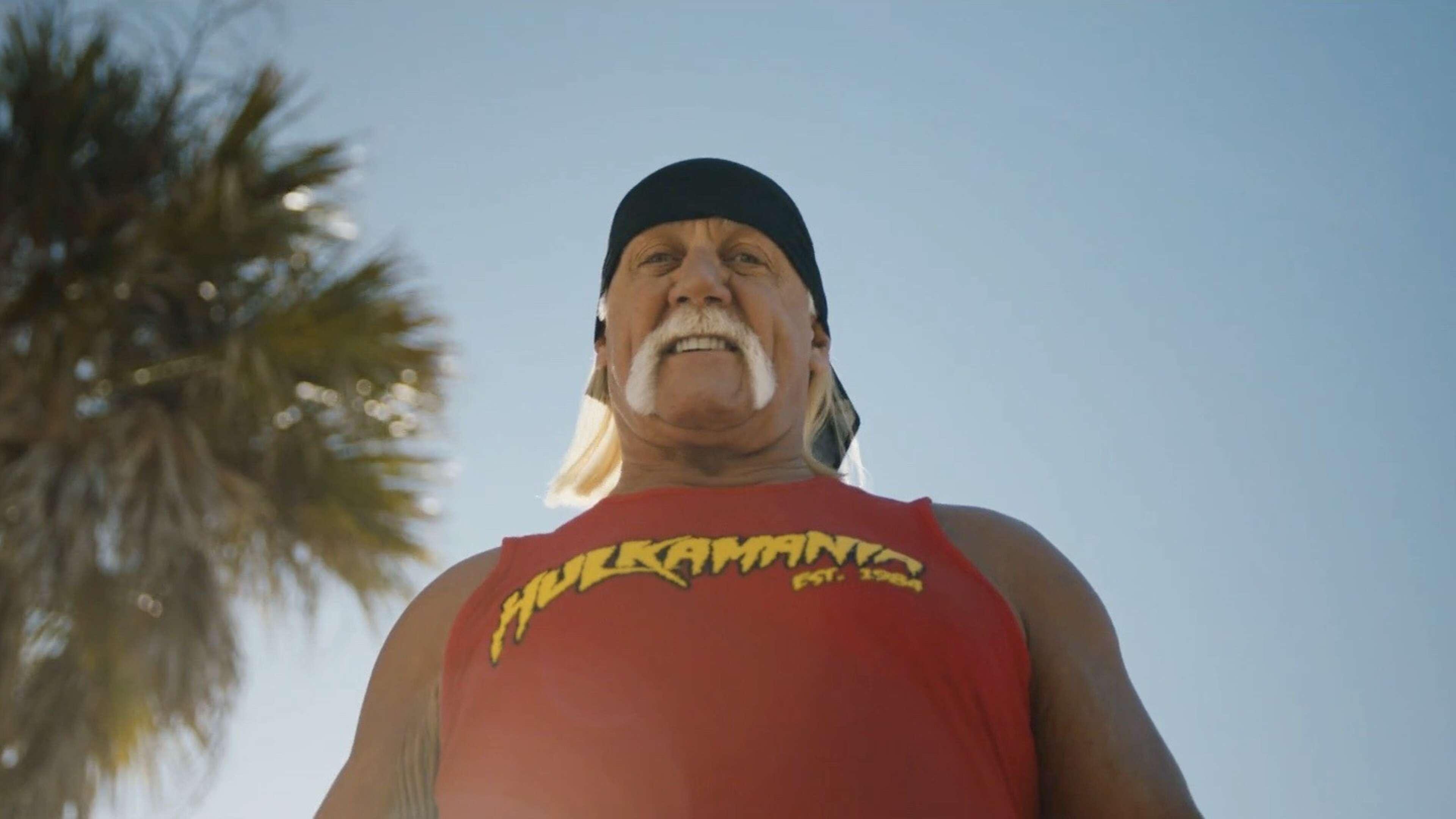 Centraal Beheer - Hulk-